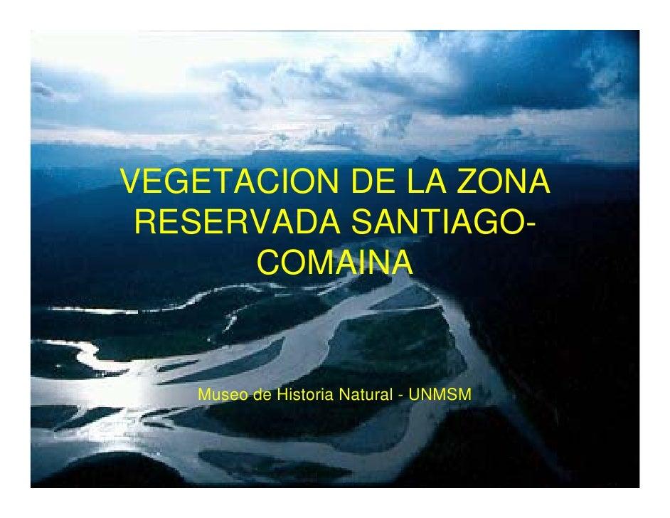 VEGETACION DE LA ZONA  RESERVADA SANTIAGO-       COMAINA      Museo de Historia Natural - UNMSM