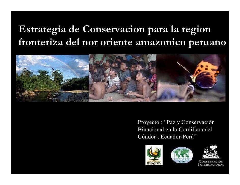 Estrategia de Conservacion para la region fronteriza del nor oriente amazonico peruano                              Proyec...