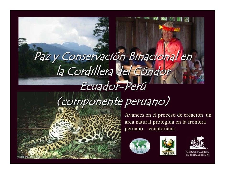 Paz y Conservación Binacional en      la Cordillera del Cóndor           Ecuador-Perú      (componente peruano)           ...