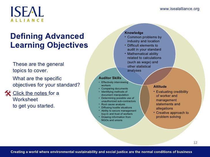 2 Defining Auditor Learning Objectives: What an Auditor Needs to Learn