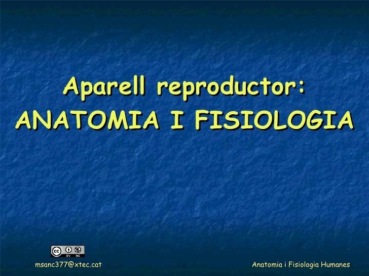 Aparell reproductor: ANATOMIA I FISIOLOGIA