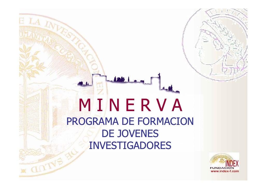 MINERVAPROGRAMA DE FORMACION      DE JOVENES    INVESTIGADORES