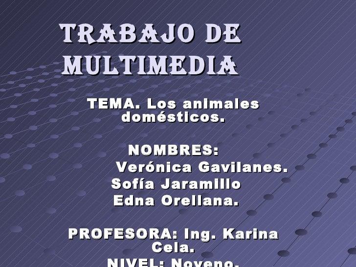 TRABAJO DE MULTIMEDIA TEMA. Los animales domésticos. NOMBRES: Verónica Gavilanes. Sofía Jaramillo Edna Orellana. PROFESORA...