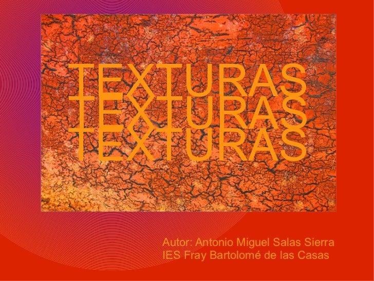 TEXTURAS TEXTURAS TEXTURAS Autor: Antonio Miguel Salas Sierra IES Fray Bartolomé de las Casas