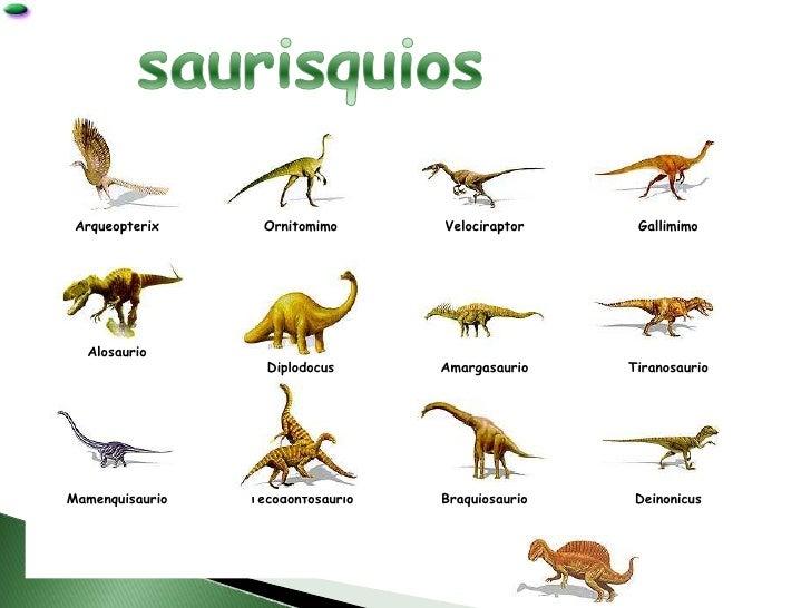 Los Dinosaurios Corazas, cabeza en forma de cúpula, boca en forma de pico de pato y dorso provisto de placas. los dinosaurios
