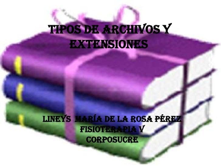 TIPOS DE ARCHIVOS Y EXTENSIONES <br />Lineys  maría de la rosa Pérez<br />Fisioterapia V<br />corposucre<br />