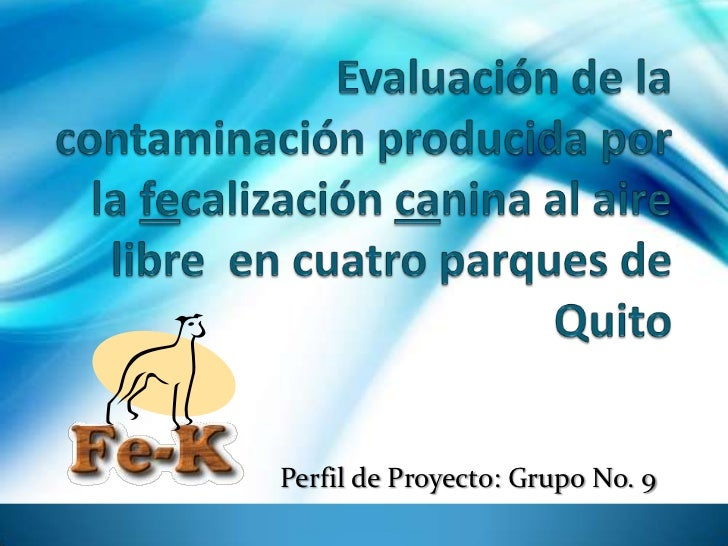 Evaluación de la contaminación producida por la fecalizacióncanina al aire libre  en cuatro parques de Quito<br />Grupo No...