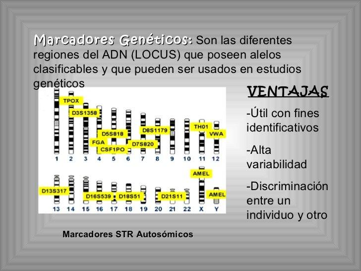 Marcadores STR Autosómicos Marcadores Genéticos:   Son las diferentes regiones del ADN (LOCUS) que poseen alelos clasifica...