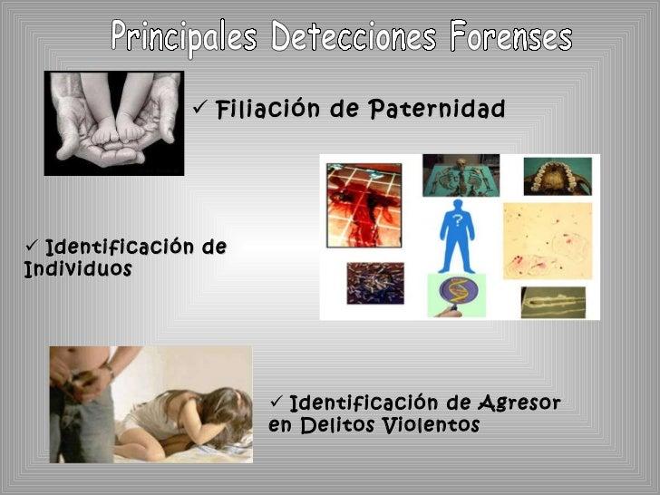 <ul><li>Filiación de Paternidad </li></ul><ul><li>Identificación de Individuos </li></ul><ul><li>Identificación de Agresor...
