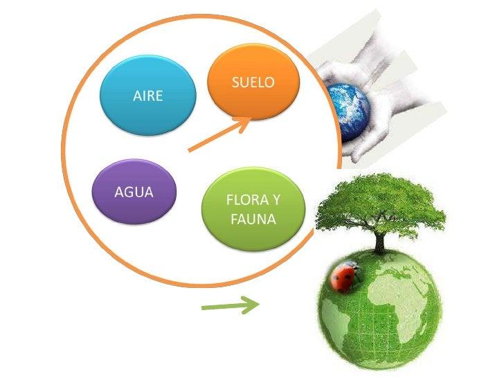 Fuentes solares de energ a e impacto ambiental for Fuentes de jardin solares