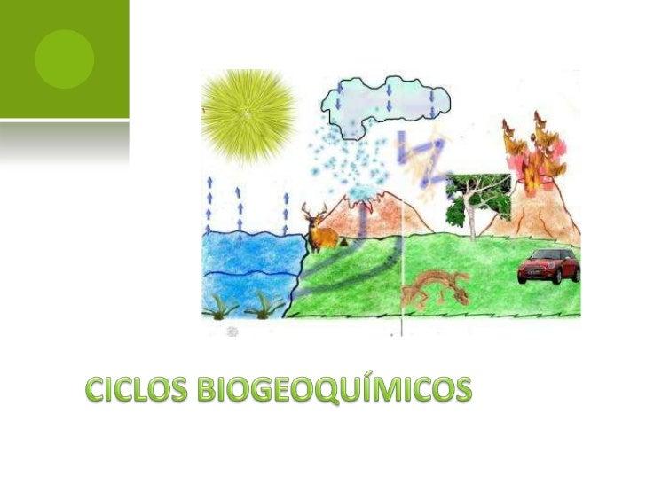    Un ciclo es una serie de etapas de un proceso    que se repite con cierta regularidad.   Los nutrimentos de un ecosis...