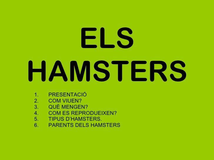 ELS HAMSTERS <ul><li>PRESENTACIÓ </li></ul><ul><li>COM VIUEN? </li></ul><ul><li>QUÈ MENGEN? </li></ul><ul><li>COM ES REPRO...