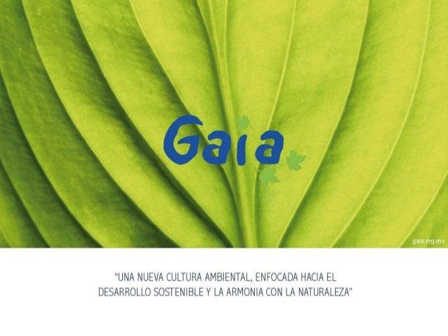 Presentación GAIA, AC Presentación individual:  Nombre  Experiencia con Gaia  ¿Qué te trajo hoy aquí?