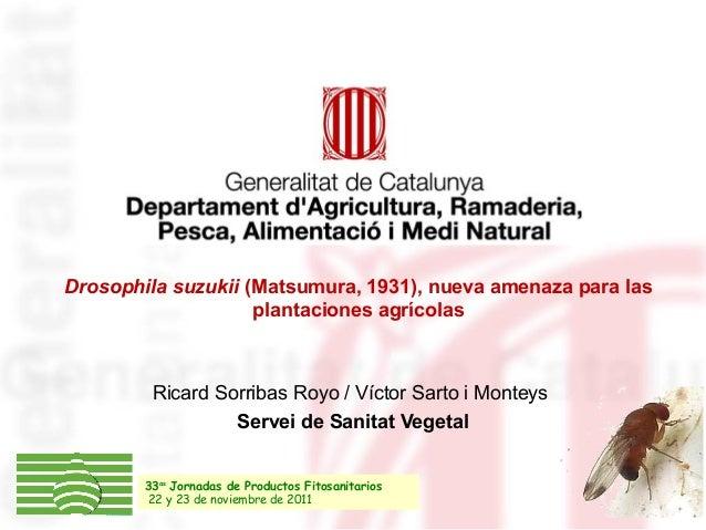 Drosophila suzukii (Matsumura, 1931), nueva amenaza para las plantaciones agrícolas Ricard Sorribas Royo / Víctor Sarto i ...