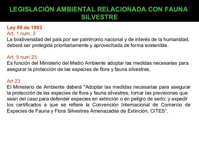 LEGISLACIÓN AMBIENTAL RELACIONADA CON FAUNA SILVESTRE Ley 99 de 1993 Art. 1 num. 2 La biodiversidad del país por ser patri...