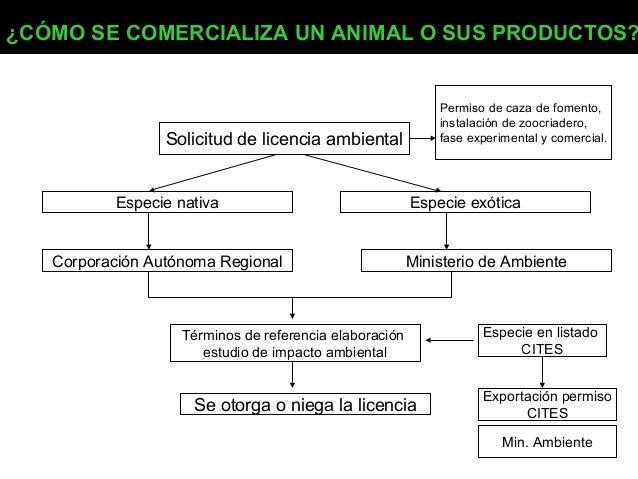 ¿CÓMO SE COMERCIALIZA UN ANIMAL O SUS PRODUCTOS?  Permiso de caza de fomento, instalación de zoocriadero, fase experimenta...
