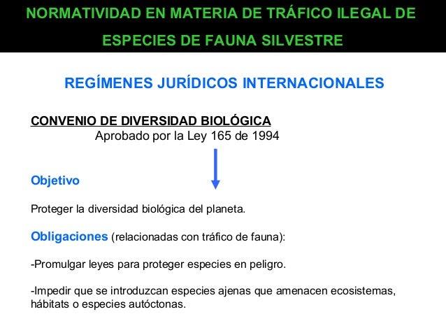 NORMATIVIDAD EN MATERIA DE TRÁFICO ILEGAL DE ESPECIES DE FAUNA SILVESTRE REGÍMENES JURÍDICOS INTERNACIONALES CONVENIO DE D...