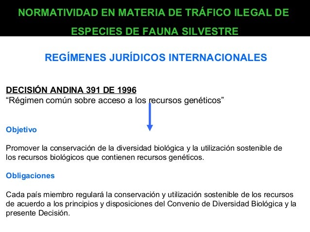 NORMATIVIDAD EN MATERIA DE TRÁFICO ILEGAL DE ESPECIES DE FAUNA SILVESTRE REGÍMENES JURÍDICOS INTERNACIONALES DECISIÓN ANDI...