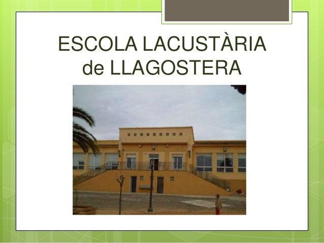 ESCOLA LACUSTÀRIA de LLAGOSTERA