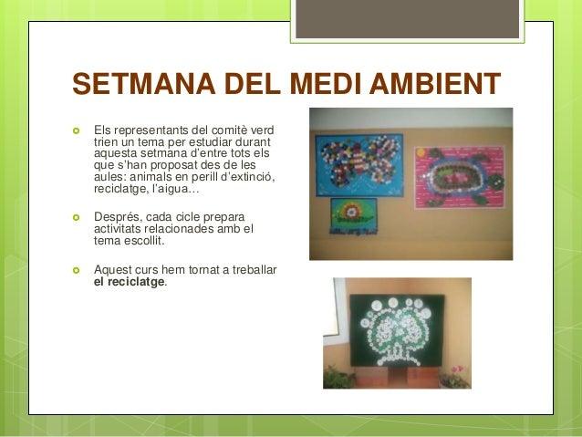 SETMANA DEL MEDI AMBIENT  Els representants del comitè verd trien un tema per estudiar durant aquesta setmana d'entre tot...