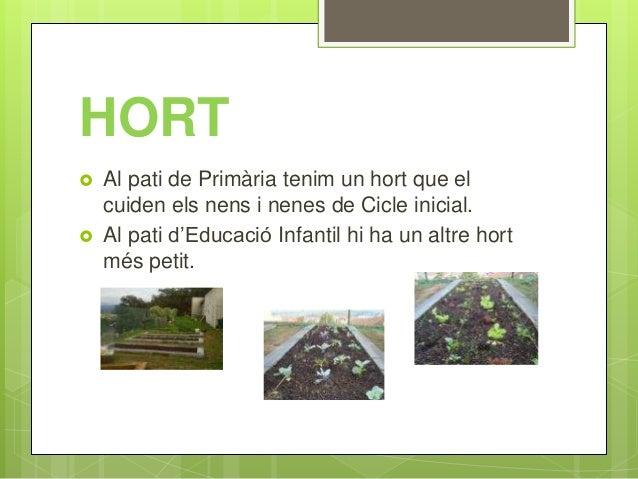 HORT  Al pati de Primària tenim un hort que el cuiden els nens i nenes de Cicle inicial.  Al pati d'Educació Infantil hi...