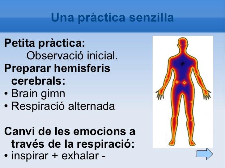 Una pràctica senzilla <ul><li>Petita pràctica: </li></ul><ul><li>Observació inicial. </li></ul><ul><li>Preparar hemisferis...