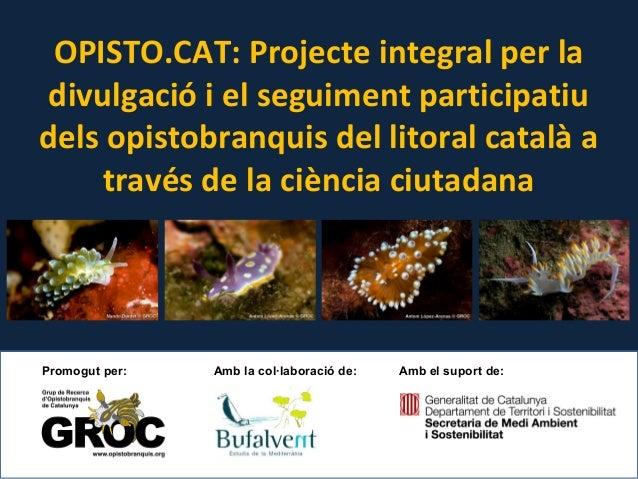 OPISTO.CAT: Projecte integral per la divulgació i el seguiment participatiu dels opistobranquis del litoral català a travé...
