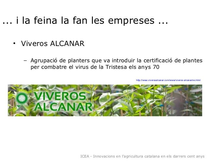 El sector catal de les llavors i els planters en els for Viveros alcanar