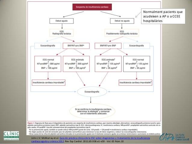 Reptes en l'atenció del pacient gran hipertens pluripatològic