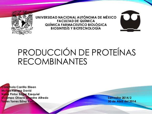 UNIVERSIDAD NACIONAL AUTÓNOMA DE MÉXICO FACULTAD DE QUÍMICA QUÍMICA FARMACEUTICO BIOLÓGICA BIOSINTESÍS Y BIOTECNOLOGÍA PRO...