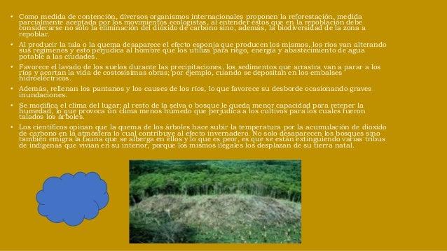 Desertificación Desertización se entiende como el proceso, normalmente cíclico (regular o anárquico), por el que un territ...
