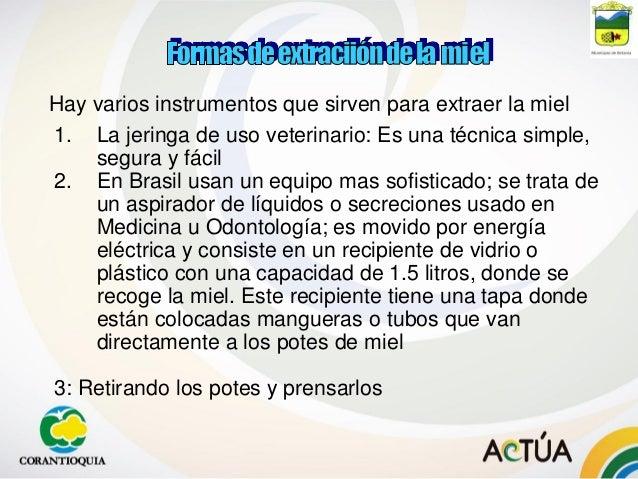 4° SEMINARIO INTERNACIONAL DE APICULTURA 2001 Univ. Nacional Sede Medellín 8° ENCUENTRO DE APICULTOTRES 2001 Univ. Naciona...