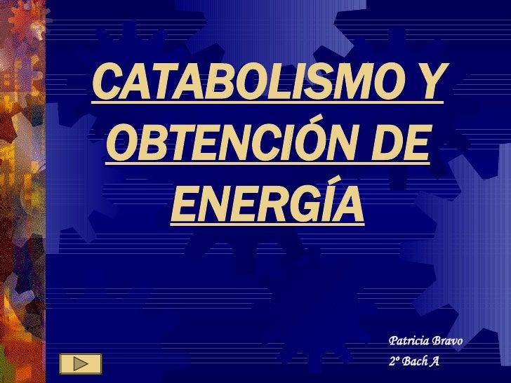 CATABOLISMO Y OBTENCIÓN DE ENERGÍA Patricia Bravo 2º Bach A