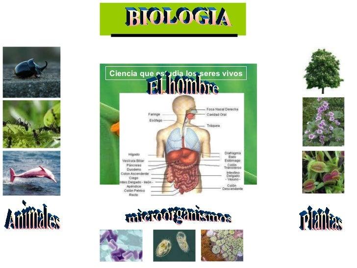 BIOLOGIA Ciencia que estudia los seres vivos Plantas microorganismos Animales El hombre