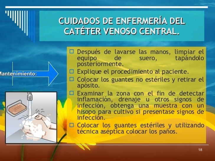 Cuidados del cateter venoso central - Cuidados de una hortensia ...