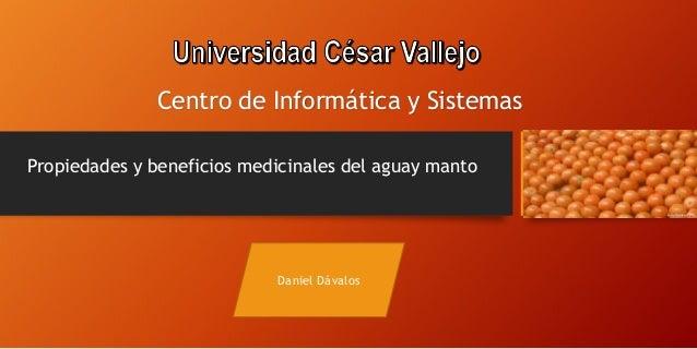 Propiedades y beneficios medicinales del aguay manto Daniel Dávalos Centro de Informática y Sistemas