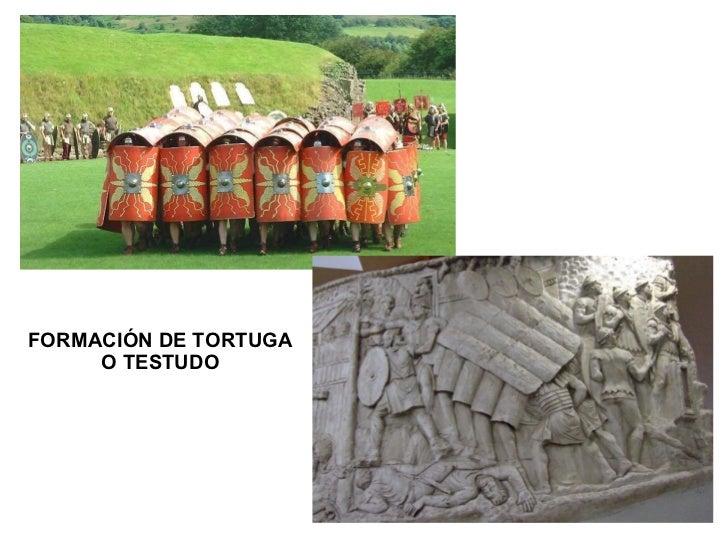 FORMACIÓN DE TORTUGA O TESTUDO
