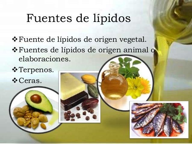 que son los esteroides o lipidos derivados