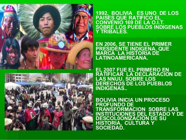 Viceministro de Medicina Tradicional e Interculturalidad de Bolivia.  Slide 3