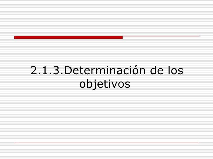 2.1.3.Determinación de los objetivos