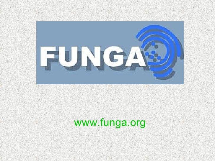 www.funga.org