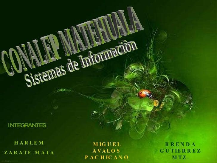 CONALEP MATEHUALA INTEGRANTES HARLEM ZARATE MATA MIGUEL AVALOS PACHICANO BRENDA GUTIERREZ MTZ. Sistemas de Informaciòn