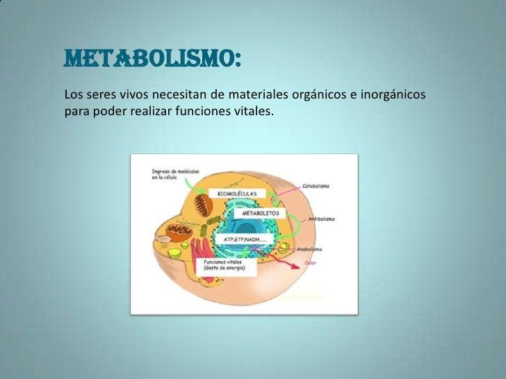 Prácticas para metabolismo cuerpos cetonicos