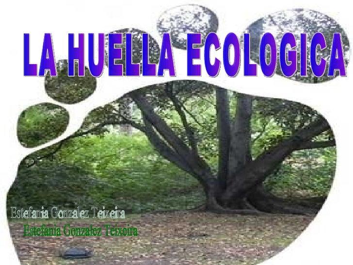 LA HUELLA ECOLOGICA Estefania Gonzalez Teixeira