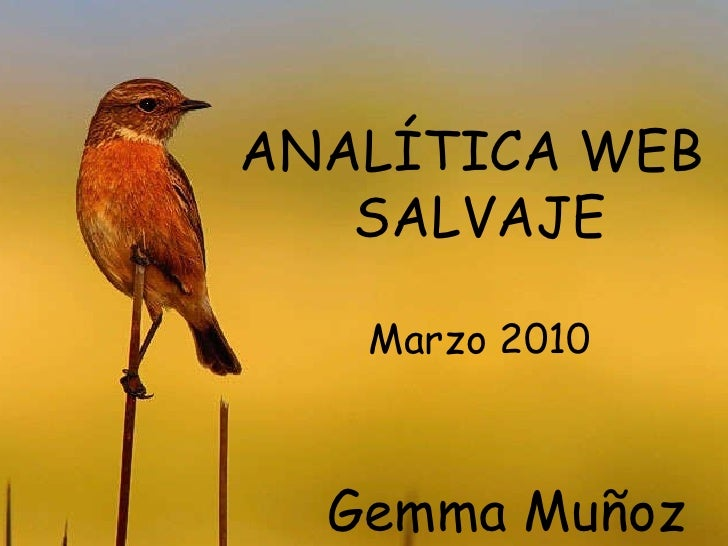 ANALÍTICA WEB  SALVAJE Marzo 2010 Gemma Muñoz