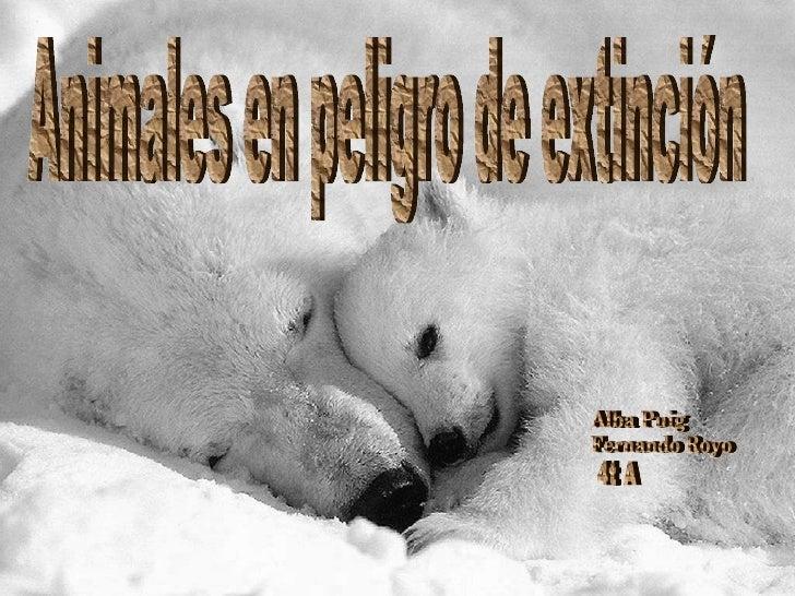 Animales en peligro de extinción Alba Puig  Fernando Royo 4t A