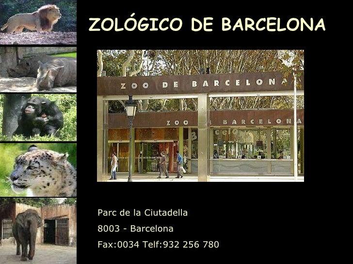 ZOLÓGICO DE BARCELONA Parc de la Ciutadella  8003 - Barcelona Fax: 0034  Telf: 932 256 780     ...