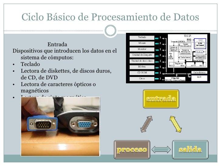 Ciclo Básico de Procesamiento de Datos<br />                          Entrada<br />Dispositivos que introducen los datos e...
