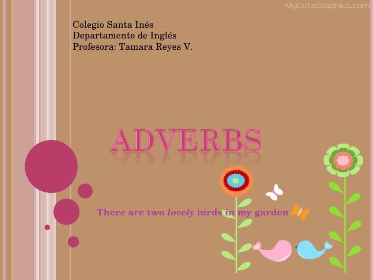 There are two  lovely  birds in my garden Colegio Santa Inés Departamento de Inglés Profesora: Tamara Reyes V.