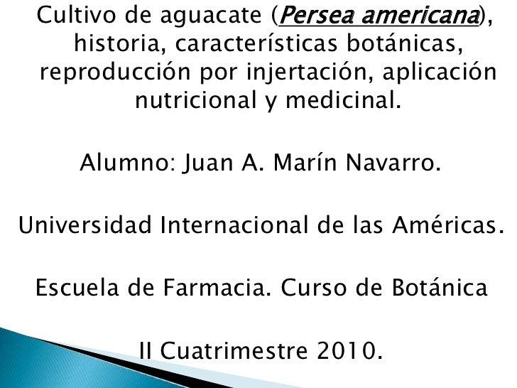 Cultivo de aguacate (Persea americana), historia, características botánicas, reproducción por injertación, aplicación nutr...